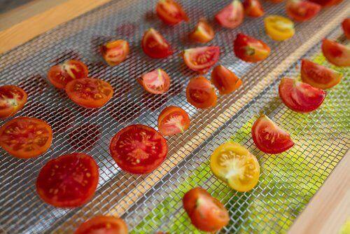 ντοματες σε αφυγραντηρα με αφυγραντήρα τροφίμων