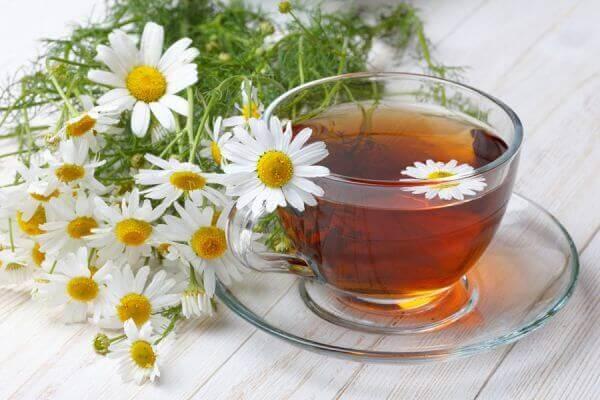 χαμομήλι σε τσάι και σε φυτό