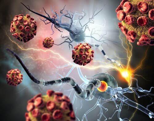 κακρινικά κύτταρα