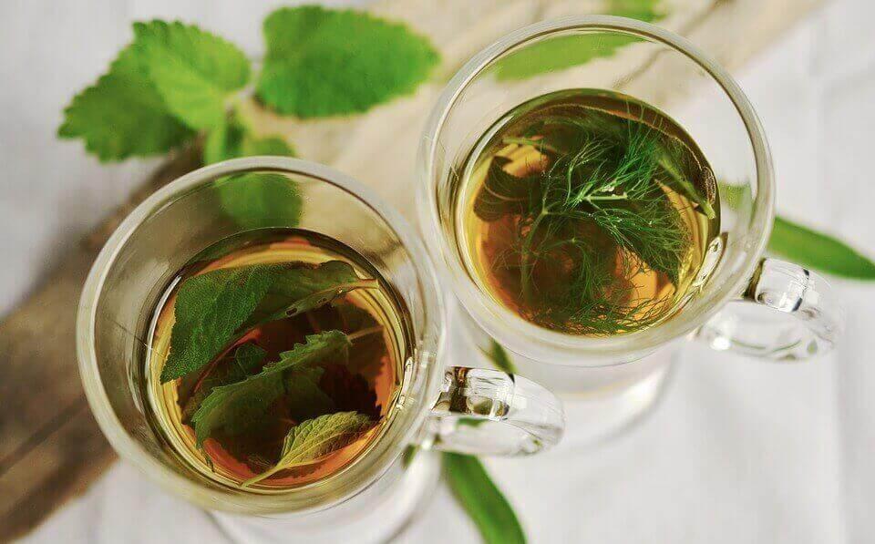 Δύο ποτήρια με έγχυμα μάραθου