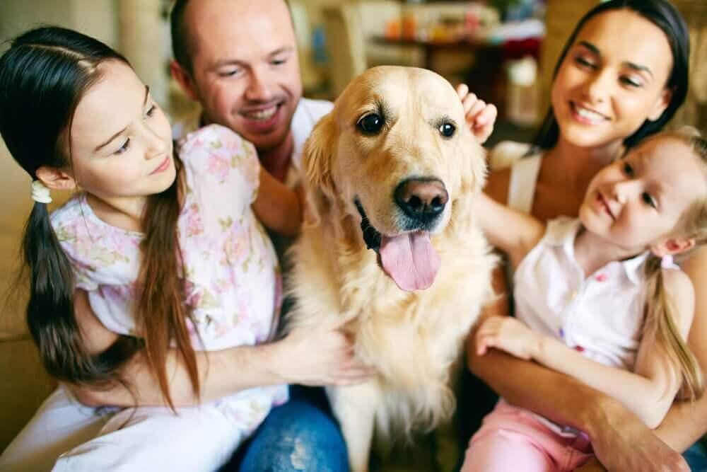 ένα κατοικίδιο στο σπίτι Οικογένεια χαϊδεύει τον σκύλο της