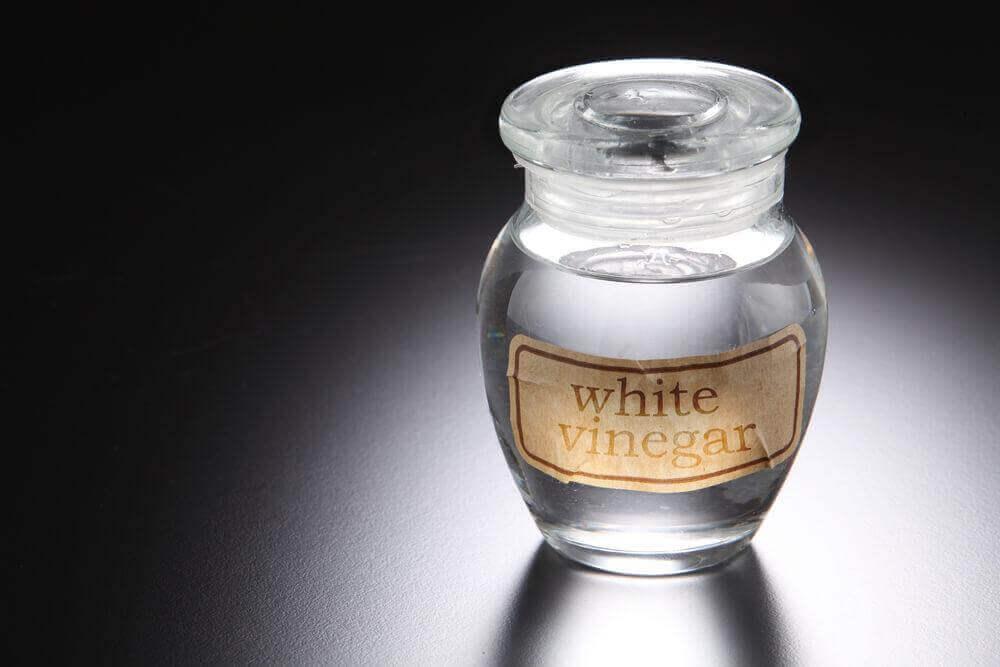 Λευκό ξύδι τη μυκητίαση του τριχωτού της κεφαλής