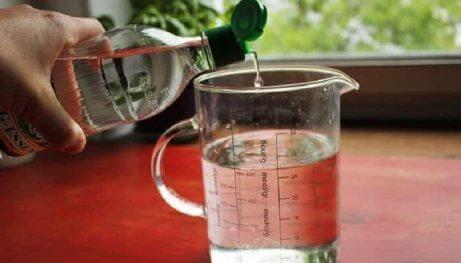 Δοχείο με νερό