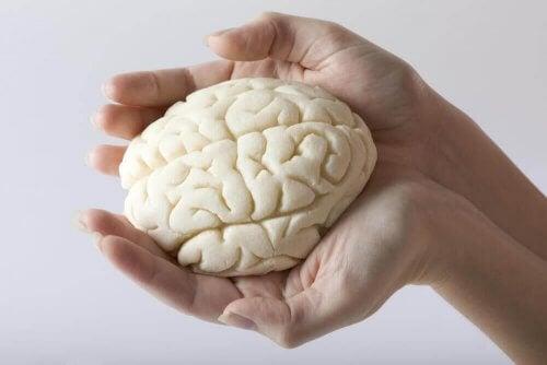 Οι 5 αποτελεσματικότερες και καλύτερες ασκήσεις για τη μνήμη