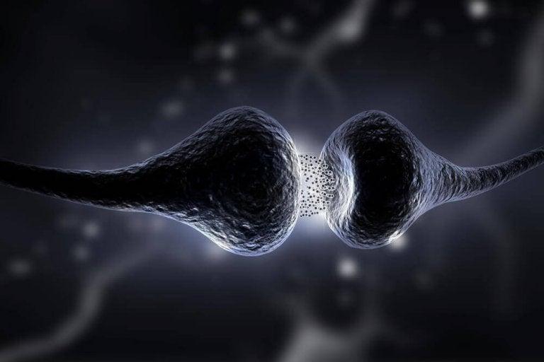 Δίαιτα της σεροτονίνης: ανακαλύψτε τις ωφέλειές της