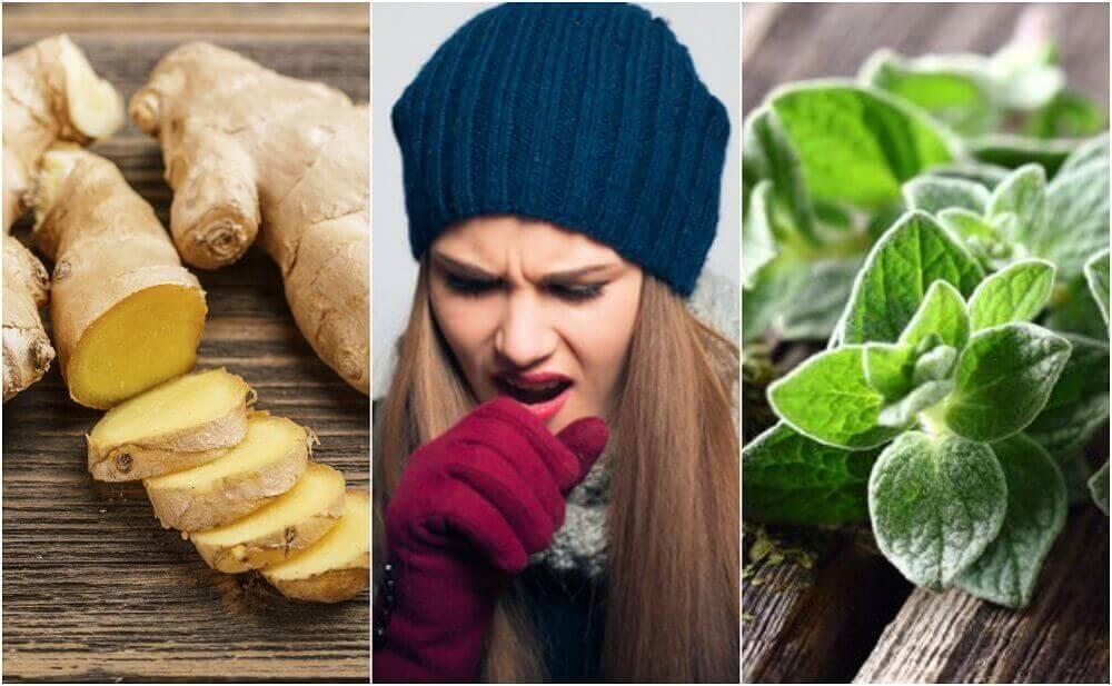 5 φυτικές θεραπείες που σας βοηθούν να απαλλαγείτε από το φλέγμα