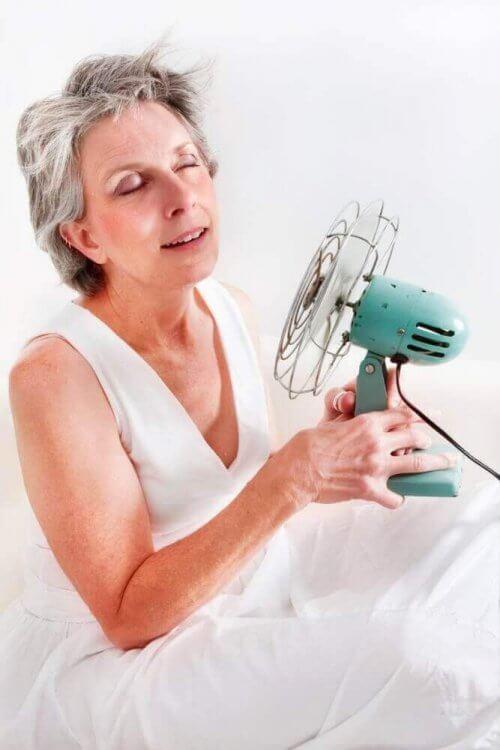 Αποτελεσματική αντιμετώπιση της εμμηνόπαυσης με φυσικές θεραπείες