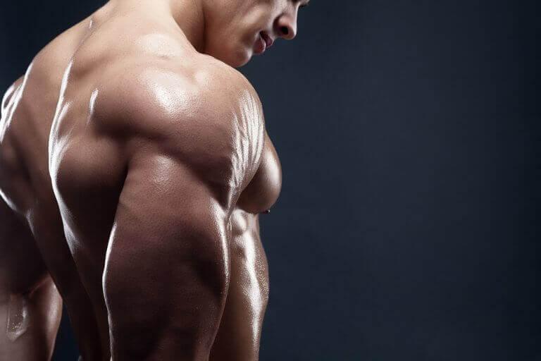 Τέσσερα νόστιμα πρωινά για αύξηση της μυϊκής σας μάζας