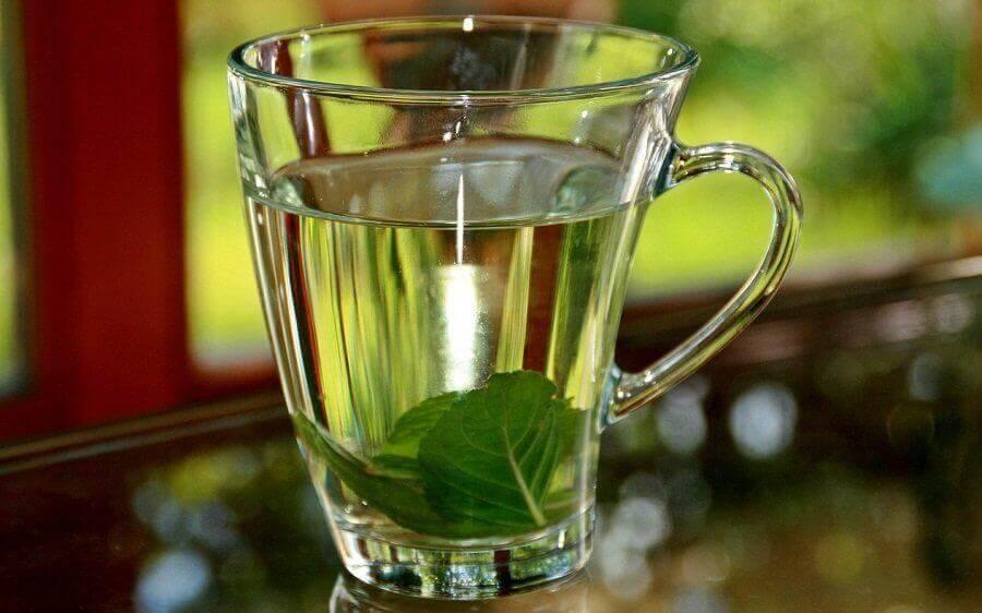 Τσάι βασιλικού σε ποτήρι