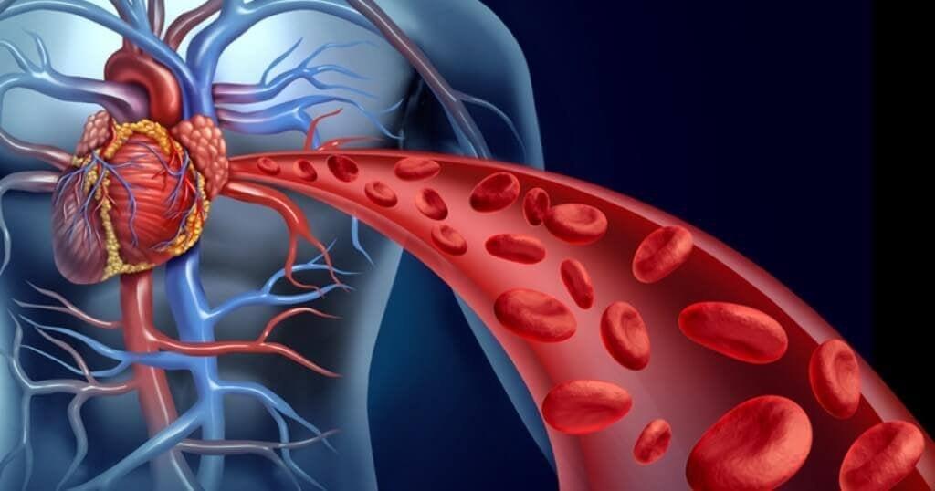 Ενίσχυση της κυκλοφορίας του αίματος στο σώμα σας με 4 τρόπους