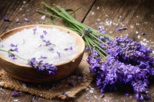 Αφαιρέστε τις δυσάρεστες οσμές - Μαγειρική σόδα και λεβάντα