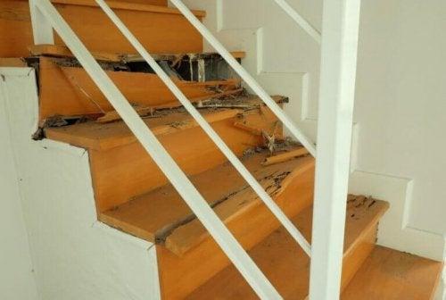 Απαλλαγείτε από τους τερμίτες στο σπίτι σας: μάθετε πώς