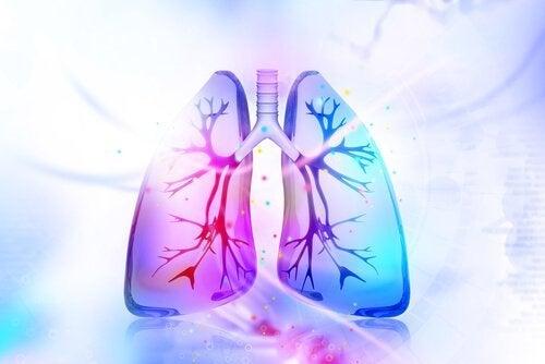 Φυσικές θεραπείες για την αποτοξίνωση των πνευμόνων