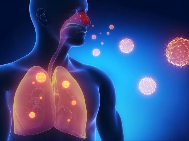 ιδιότητες του θυμαριού που ωφελούν το αναπνευστικό σύστημα
