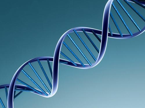 Αλυσίδα DNA