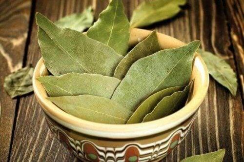 Χρησιμοποιήστε φύλλα δάφνης για την αντιμετώπιση του διαβήτη