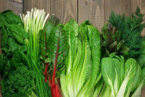 Διάφορα φυλλώδη πράσινα λαχανικά