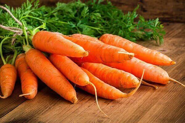 Καρότα σε ματσάκι