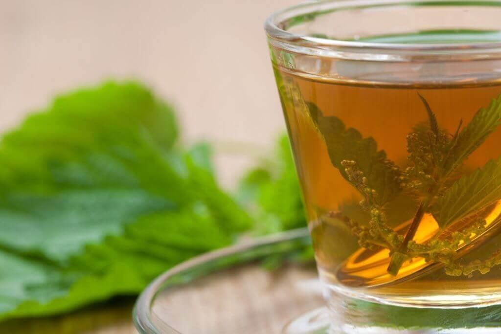 τσάι τσουκνίδας