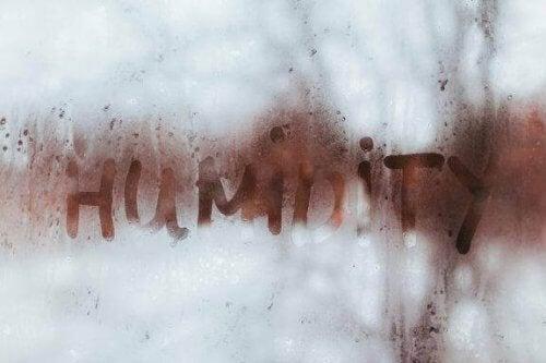 Υπερβολική υγρασία στο σπίτι: πώς να την αντιμετωπίσετε