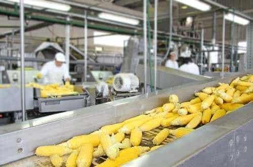 Επεξεργασία των τροφίμων: Πώς επηρεάζει τη θρεπτική αξία των τροφών;