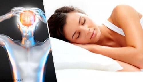 Εγκέφαλος και γυναίκα που κοιμάται