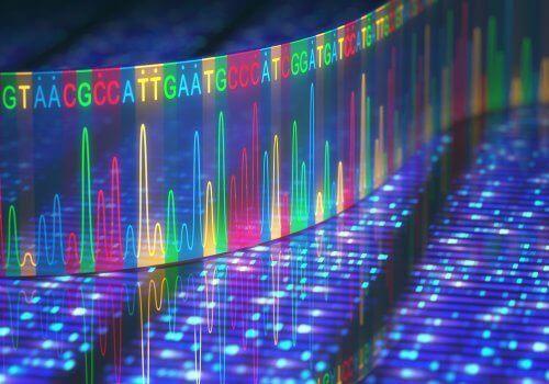 Κώδικας DNA