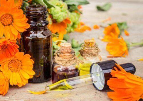 Άνθη και έλαιο άρνικας