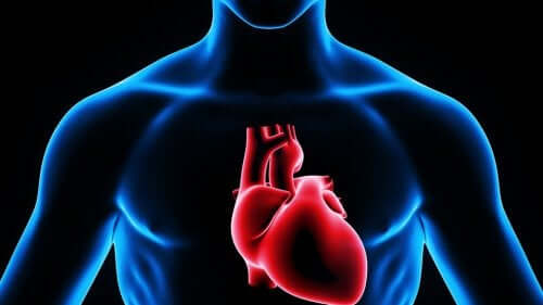 Ψηφιακή απεικόνιση καρδιάς