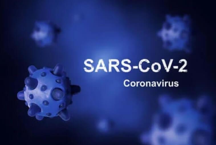 Ποια είναι η προέλευση του κορωνοϊού: Όλες οι θεωρίες