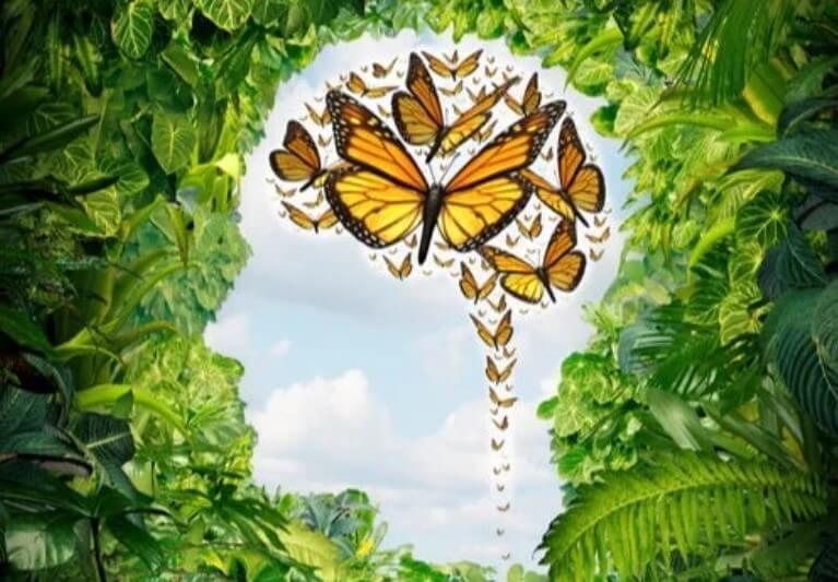 Πεταλούδες στο μυαλό