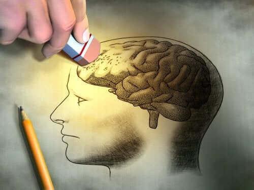 Άτομο σβήνει τμήμα ζωγραφισμένου εγκεφάλου