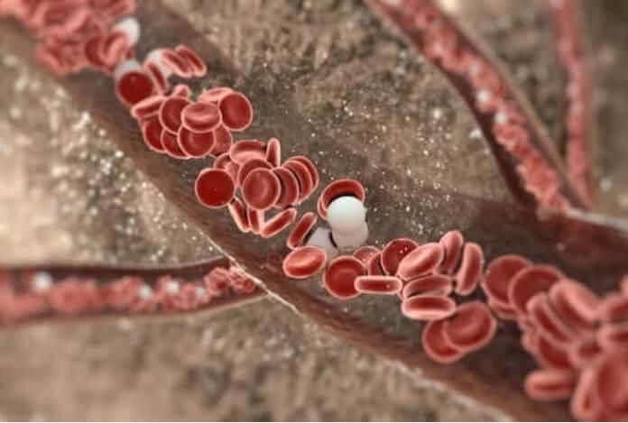 αιμοπετάλια στο αιμα