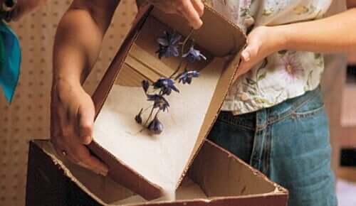 Αποξηραμένα λουλούδια σε κουτί