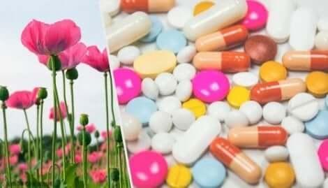 Χωράφι με παπαρούνες και διάφορα χάπια