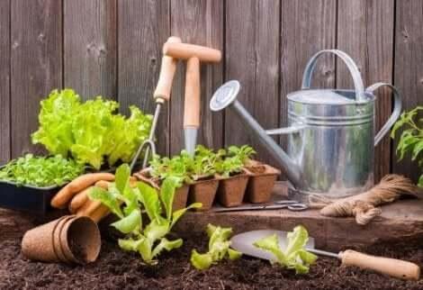 Διάφορα εργαλεία για τον κήπο