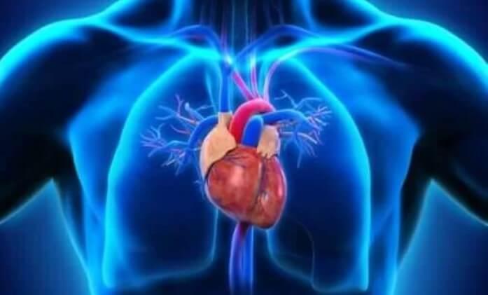 καρδιά σε σώμα