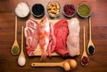 Τα πάντα για τη λειτουργία των πρωτεϊνών στο σώμα