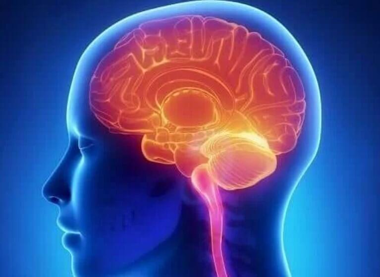 απεικόνιση εγκεφάλου