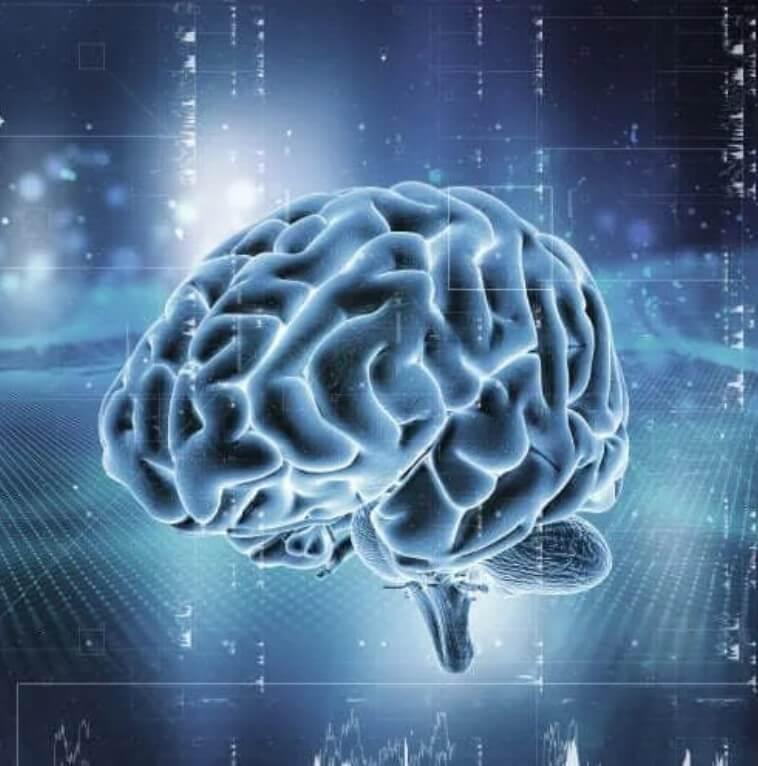 Το σύστημα ανταμοιβής του εγκεφάλου: Πώς λειτουργεί;