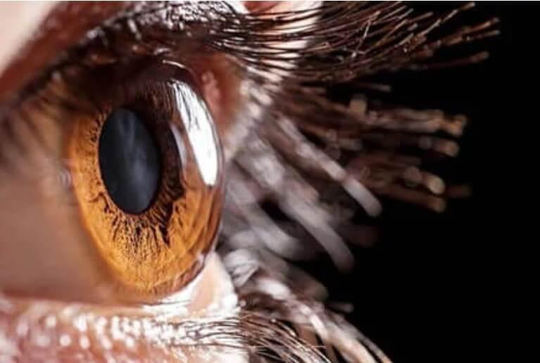 μάτι από κοντά