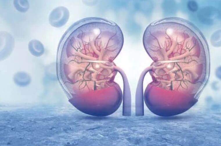 Αγγειοπιεσίνη: Τα χαρακτηριστικά και οι επιδράσεις της