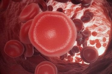 Προβλήματα με την πήξη του αίματος: Πώς λειτουργεί;