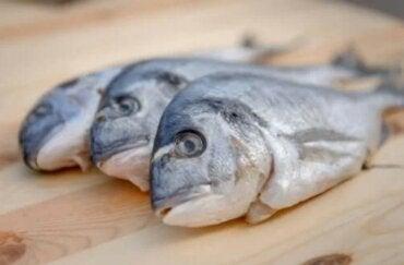 Υδράργυρος στα ψάρια: Θα πρέπει να ανησυχείτε;