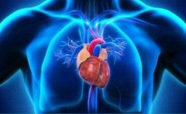 Περικαρδίτιδα: Συμπτώματα, αιτίες και θεραπεία