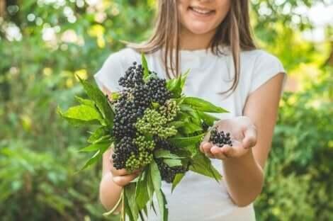 Γυναίκα κρατά φρούτα σαμπούκου