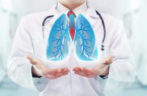 Οι επιδράσεις της αναπνοής στον εγκέφαλο