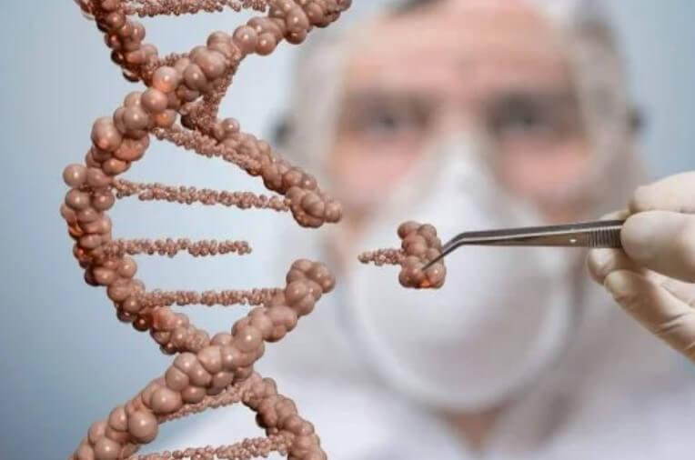 βλαστοκύτταρα σε DNA