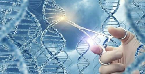 Απεικόνιση ανθρώπινου DNA