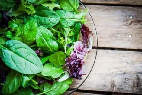 Μπολ με σαλάτα διάφορων λαχανικών